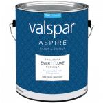 Valspar Aspire Paint & Primer