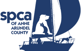 SPCA - Giving Back to the Community