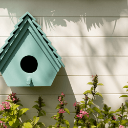 Green DIY Projects for your Home